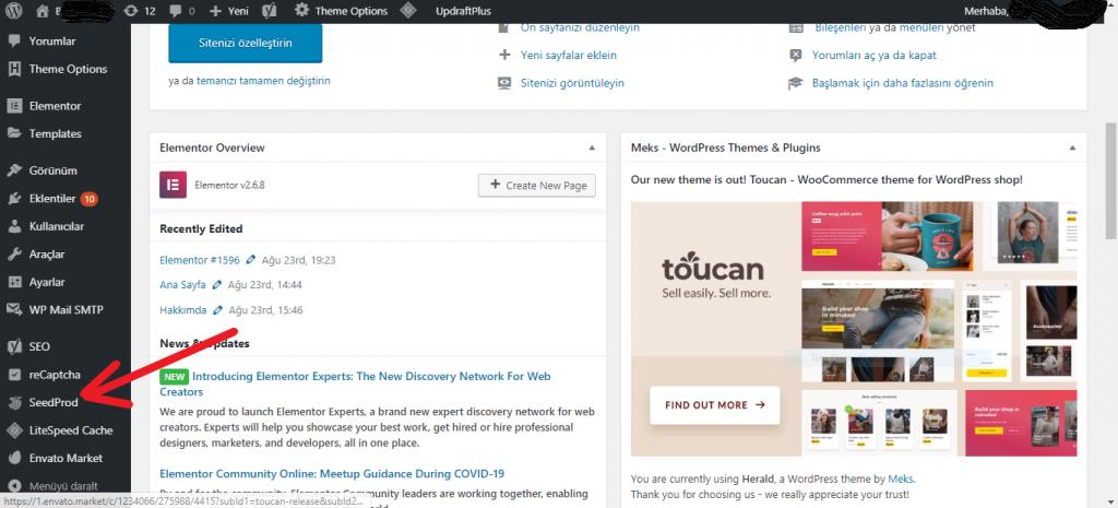 Wordpress Site Bakıma Alma Nasıl Yapılır? 1
