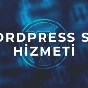 wordpress seo hizmeti