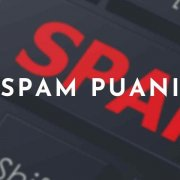 Spam Puanı