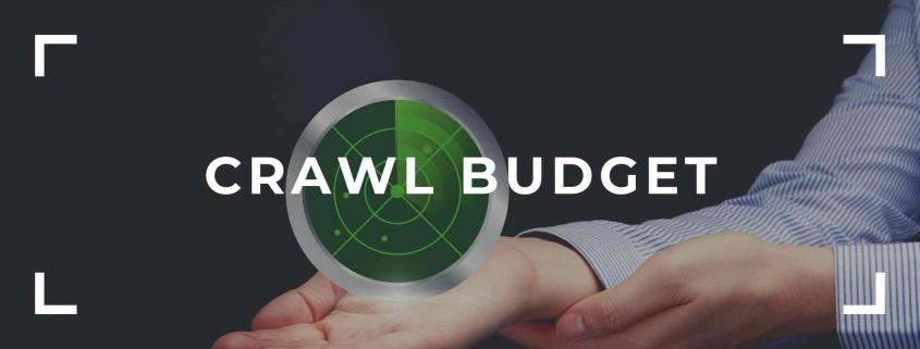 crawl budget nedir