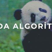 google panda algoritması