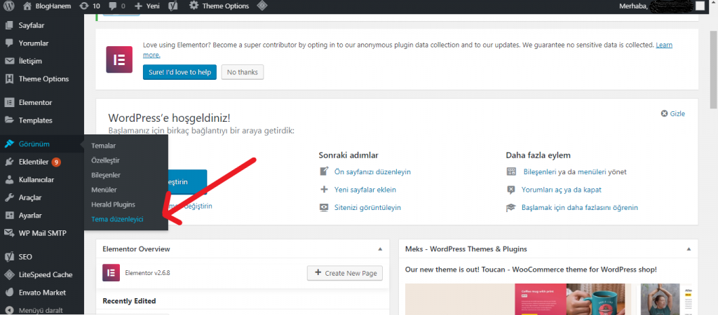 Wordpress Header Bölümüne Kod Ekleme 1