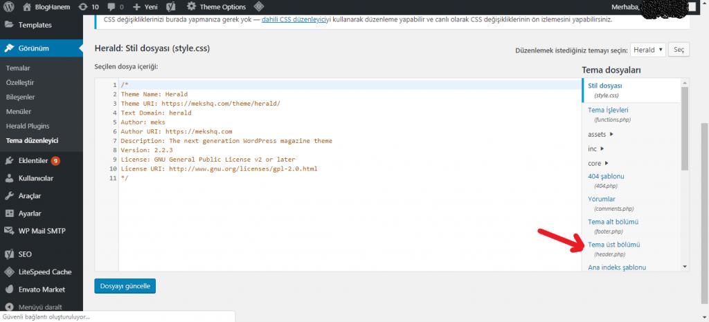 Wordpress Header Bölümüne Kod Ekleme 2