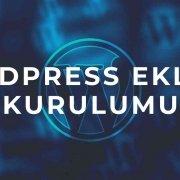wordpress eklenti kurulumu