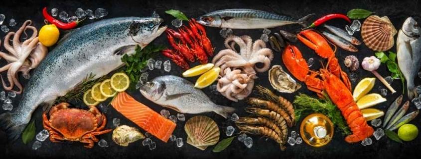 balık ihracatı