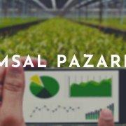 tarımsal pazarlama